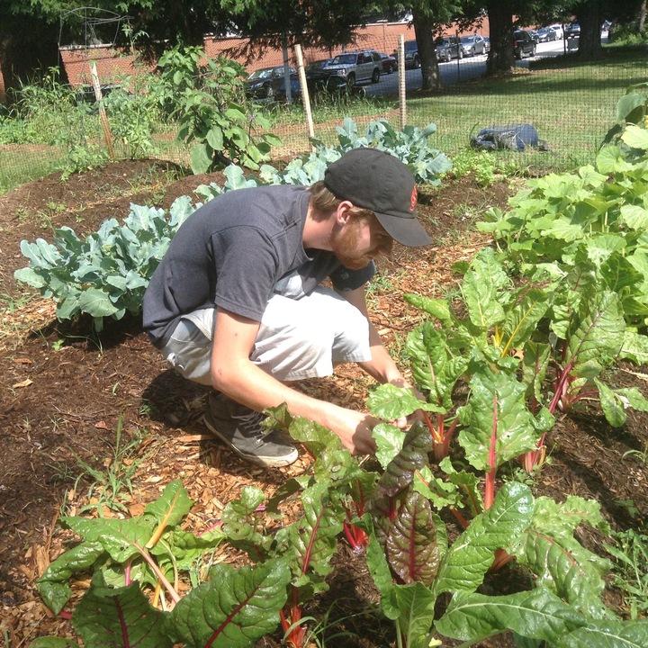 Community Involvement - Annapolis Student Life | St. John\'s College