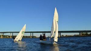 Annapolis Sailing Team 2016 St Johns 06.jpg